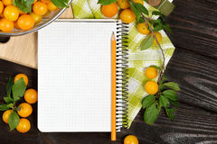 Studio photography of open blank ring bound notebook surrounded. Open blank ring bound notebook surrounded by a fresh plums and pencil on dark wooden table Stock Photo