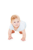 Studio picture of baby crawling Stock Image
