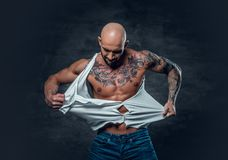 Studio portrait of athletic male with a tattoo on his chest ripp. Ing t shirt Royalty Free Stock Photos
