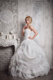 Studio portrait of beautiful young bride in white dress Stock Images