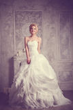 Studio portrait of beautiful young bride in white dress Stock Photos