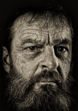 Studio portrait of fully bearded man in black and white.  Closeu Stock Photography