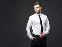 Studio portrait of handsome young businessman posing. Royalty Free Stock Images
