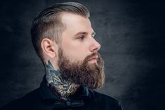 Free Studio Portrait Of Bearded Hipster Male. Stock Images - 109663634