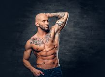 Shaved head, muscular male with tattoos on his torso over grey v. Studio portrait of shirtless shaved head, muscular male with tattoos on torso touch his head stock images