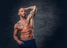 Shaved head, muscular male with tattoos on his torso over grey v. Studio portrait of shirtless shaved head, muscular male with tattoos on torso touch his head royalty free stock photo