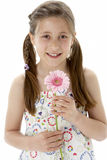 Studio Portrait of Smiling Girl Holding Flower Royalty Free Stock Images
