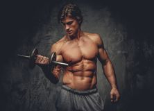 Portrait of sporty shirtless male with dumbbell. Studio portrait of sporty shirtless male with dumbbell on grey background Stock Image