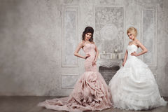 Studio portrait of two beautiful young brides in long dresses Stock Images