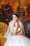 Studio portraits of beautiful bride  . Christmas decoration Stock Images