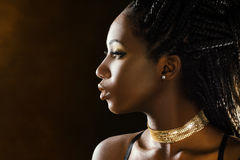 Studio profile beauty portrait of african girl. stock photography