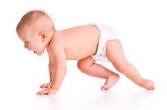 Studio shot of baby crawling Royalty Free Stock Image