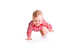 Studio shot of baby crawling Stock Photos