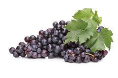 A studio shot of blue grapes with green leaf Royalty Free Stock Images
