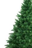 Studio shot of a Christmas tree Royalty Free Stock Images