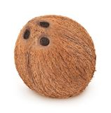 Studio shot of whole coconut isolated on a white background. Studio shot of coconut isolated on a white background. Detailed retouch royalty free stock image