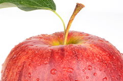 Studio shot of cut wet red apple isolated Royalty Free Stock Photography