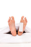 Studio shot of a dead body with a toe tag. Isolated on white background Royalty Free Stock Photos