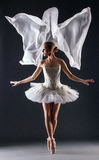 Studio shot of flexible young female ballet dancer Royalty Free Stock Image