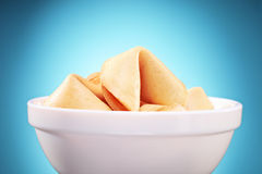 Studio shot of fortune cookies in a bowl Stock Image