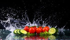 Studio shot with freeze motion of cherry tomatoes and slices of cucumber in water splash on black background. With copy space royalty free stock images