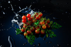 Studio shot with freeze motion of cherry tomatoes in water splash on black background. Z Stock Photography