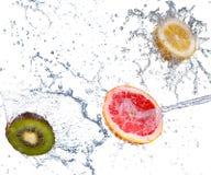 Studio shot of fresh grapefruit with water splash, isolated on w. Hite background royalty free stock photo