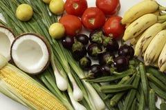 Studio shot of Fresh vegetables. stock images