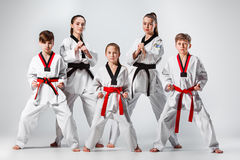 The studio shot of group of kids training karate martial arts. On gray backlground stock photos