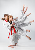 The studio shot of group of kids training karate martial arts Stock Photos