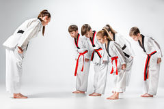 The studio shot of group of kids training karate martial arts. On gray backlground Royalty Free Stock Image