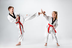 The studio shot of group of kids training karate martial arts Stock Image
