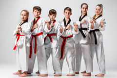 The studio shot of group of kids training karate martial arts. And posing on gray backlground stock photography