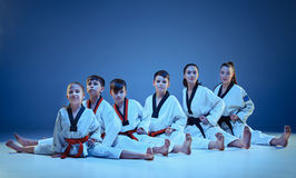 The studio shot of group of kids training karate martial arts. And sitting and posing on blue backlground Royalty Free Stock Photos