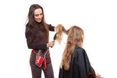 Studio shot of hairdresser doing her work Stock Photography
