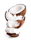 Studio shot of halved coconut Stock Photos