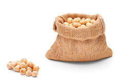 A studio shot of hazelnuts Royalty Free Stock Images