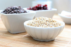 Whole Grains and Fruit. A studio shot of healthy whole grains, dried cranberries and cacao nibs Royalty Free Stock Images