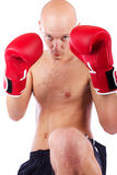 Studio shot of kick-boxer Stock Photography