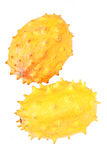 Studio shot of kiwano fruit Royalty Free Stock Image