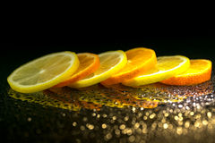 Studio shot with lemons and oranges Stock Photography