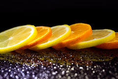 Studio shot with lemons and oranges Royalty Free Stock Photo