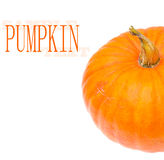 Studio shot of a nice ornamental pumpkin Royalty Free Stock Photos