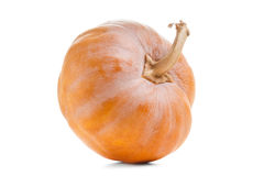 Studio shot of a nice pumpkin isolated on white Stock Photography