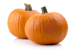 Studio shot of pumpkins isolated on white Royalty Free Stock Photography