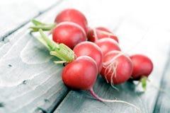 Studio shot of radish on wooden table Stock Image