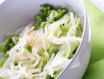 Studio shot of salad with sprout Royalty Free Stock Photo