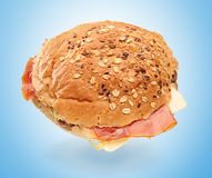 Studio shot of a sandwich Royalty Free Stock Photo