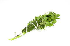 Studio Shot of Traditional Bouquet Garni On White Stock Image