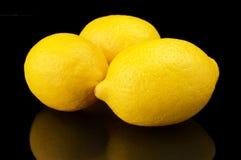 Studio shot whole three lemons isolated on black Royalty Free Stock Image